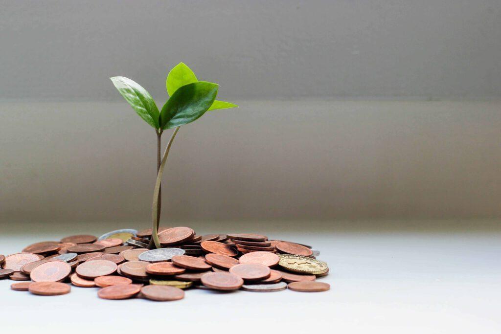 Geld groeien taxatie Teer Makelaars